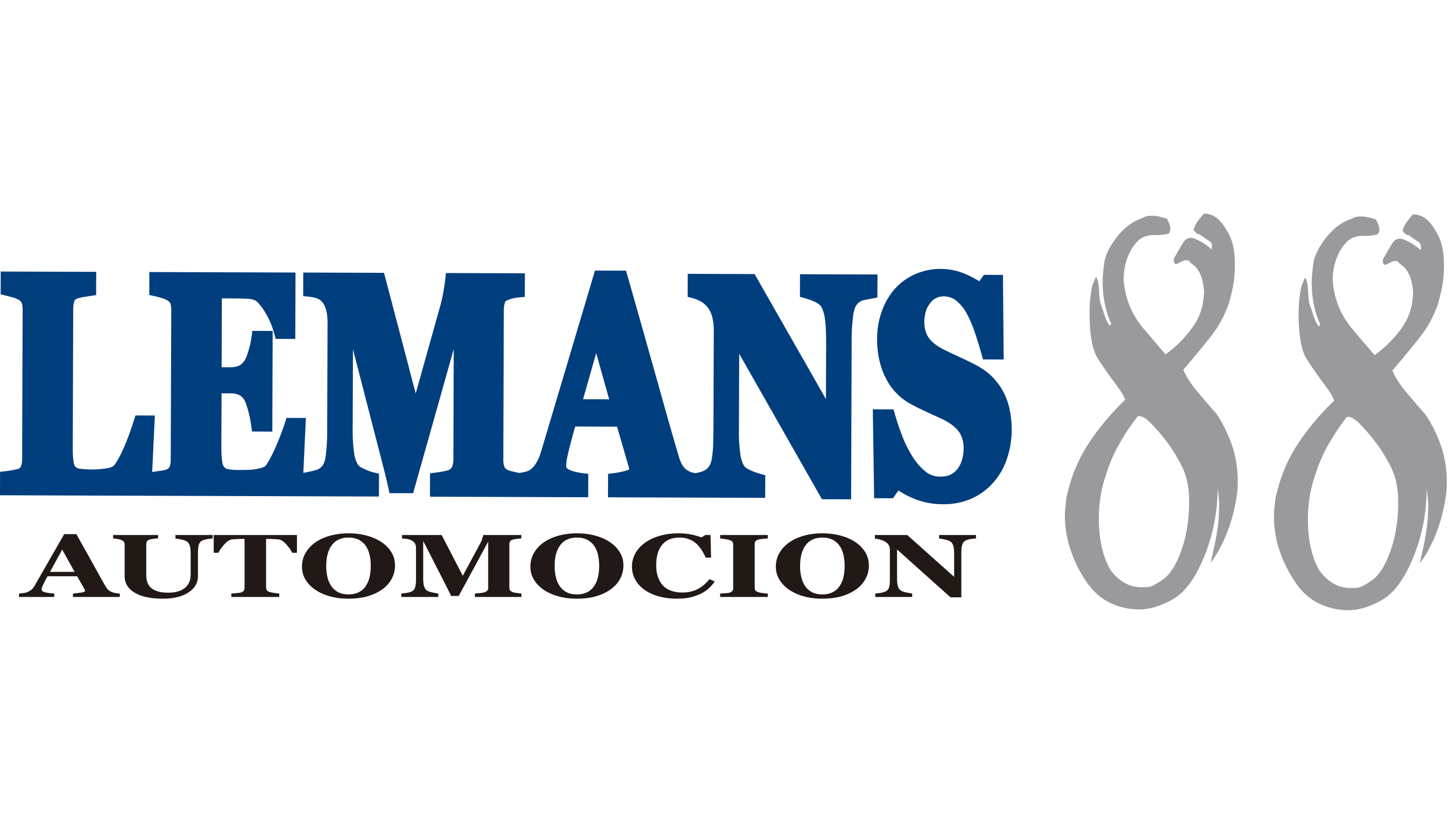 logo lemans